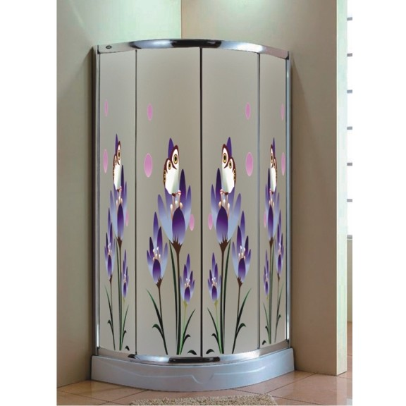 shower screen with decorative design